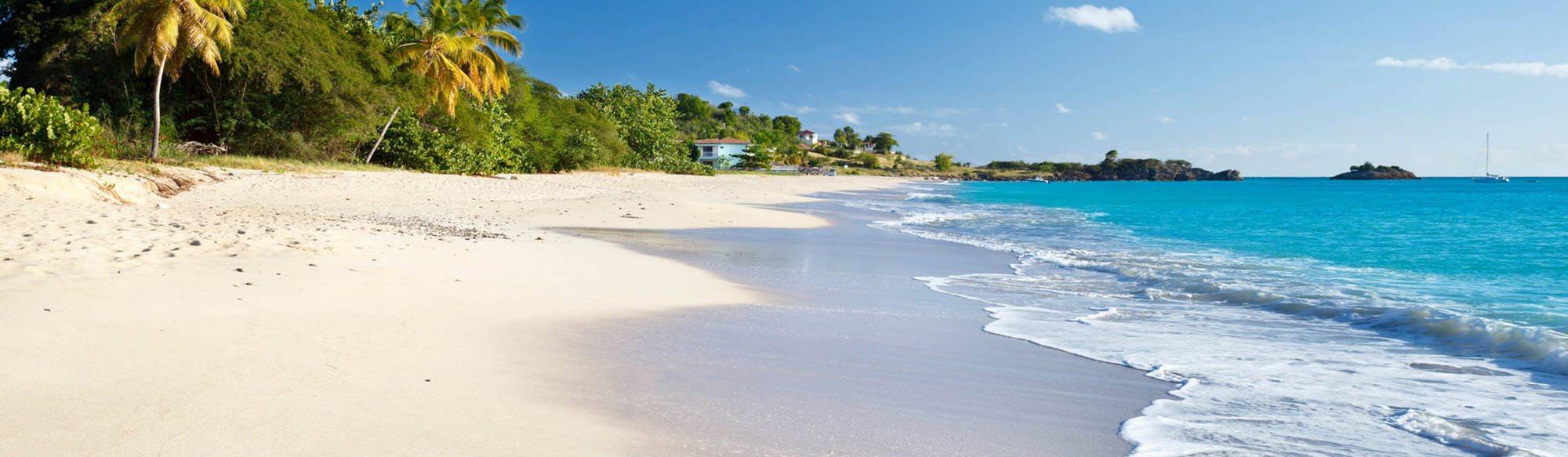 Dating caribiske