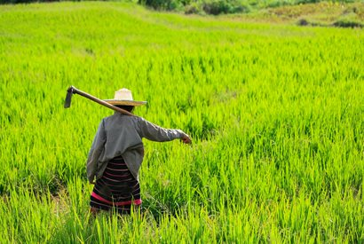 Vaccination Thailand: information om vaccinationer ved rejser til Thailand
